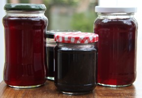 redcurrant-jelly-and-blackberry-jelly